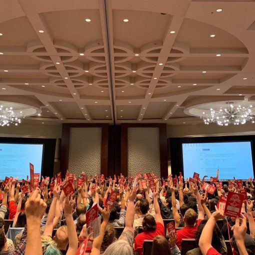 DSA convention ecosocialist Green New Deal voting
